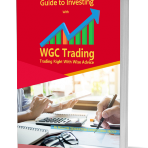 Guide to Investing : Premium eBook